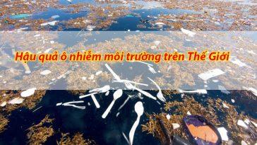 Hậu quả của ô nhiễm môi trường bằng tiếng anh