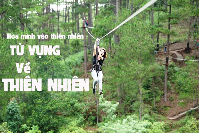 thien-nhien-new